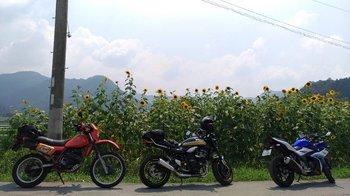 007-bike-himawari.jpg