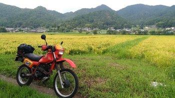 0131-bike.jpg