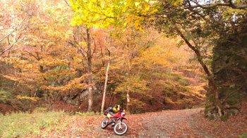 025-bike.jpg